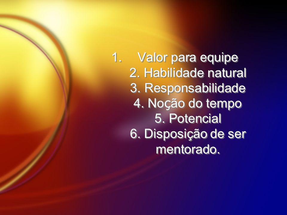 1.Valor para equipe 2. Habilidade natural 3. Responsabilidade 4. No ç ão do tempo 5. Potencial 6. Disposição de ser mentorado.