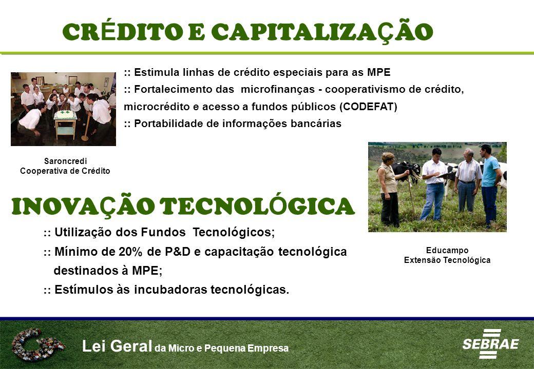 Lei Geral da Micro e Pequena Empresa CR É DITO E CAPITALIZA Ç ÃO :: Estimula linhas de crédito especiais para as MPE :: Fortalecimento das microfinanç
