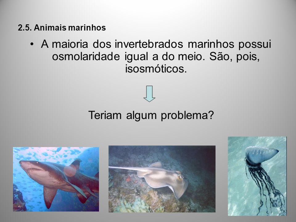 2.5. Animais marinhos A maioria dos invertebrados marinhos possui osmolaridade igual a do meio. São, pois, isosmóticos. Teriam algum problema?