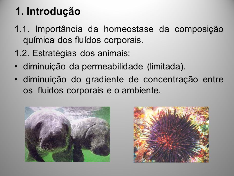 1. Introdução 1.1. Importância da homeostase da composição química dos fluídos corporais. 1.2. Estratégias dos animais: diminuição da permeabilidade (