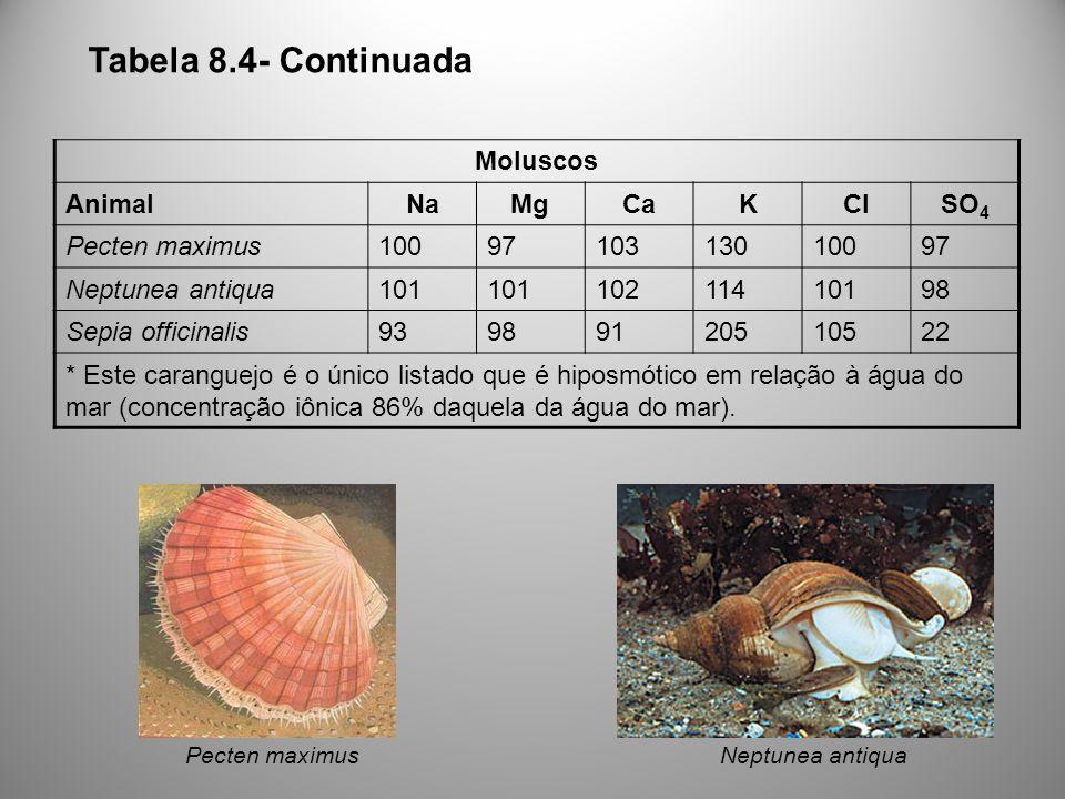 Moluscos AnimalNaMgCaKClSO 4 Pecten maximus1009710313010097 Neptunea antiqua101 10211410198 Sepia officinalis93989120510522 * Este caranguejo é o único listado que é hiposmótico em relação à água do mar (concentração iônica 86% daquela da água do mar).