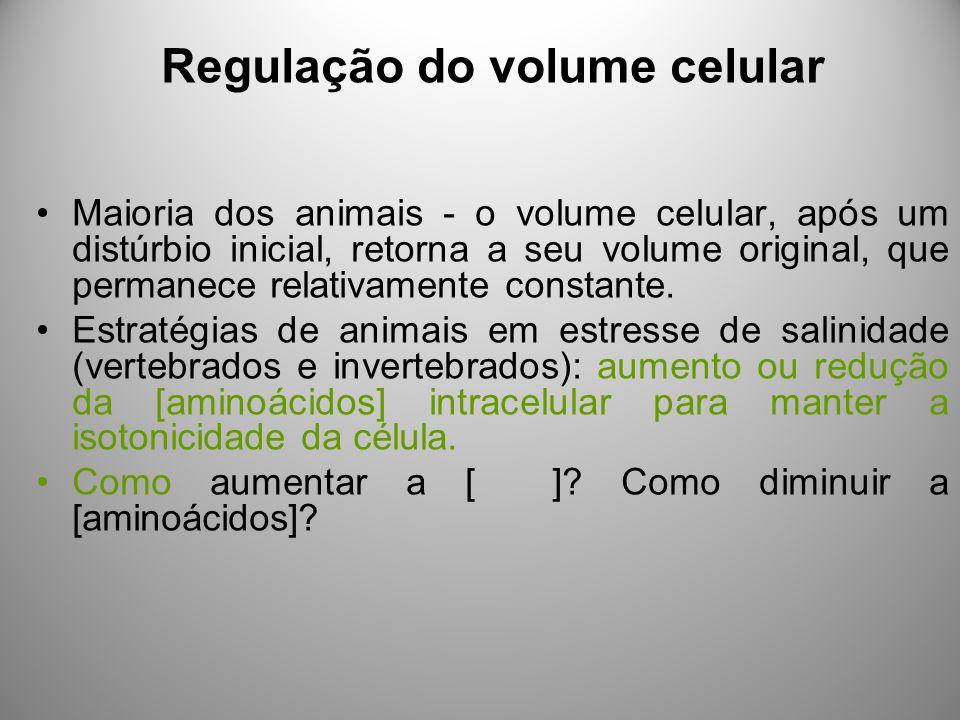Regulação do volume celular Maioria dos animais - o volume celular, após um distúrbio inicial, retorna a seu volume original, que permanece relativamente constante.