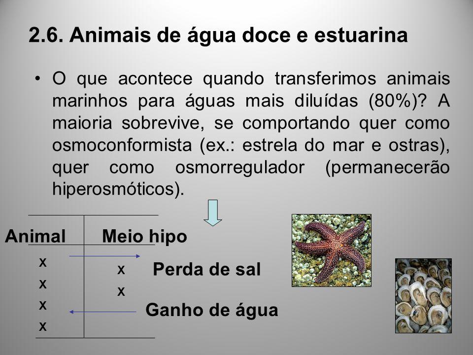 O que acontece quando transferimos animais marinhos para águas mais diluídas (80%)? A maioria sobrevive, se comportando quer como osmoconformista (ex.