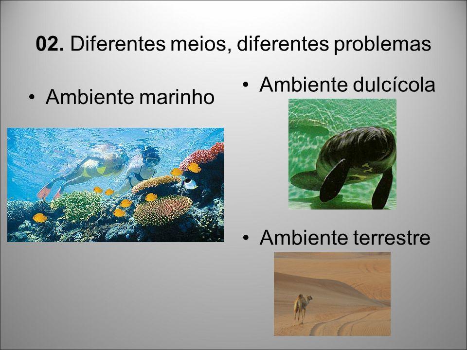 02. Diferentes meios, diferentes problemas Ambiente marinho Ambiente dulcícola Ambiente terrestre