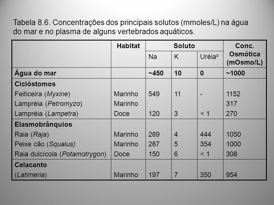HabitatSolutoConc. Osmótica (mOsmo/L) NaKUréia a Água do mar~450100~1000 Ciclóstomos Feiticeira (Myxine) Lampréia (Petromyzo) Lampréia (Lampetra) Mari