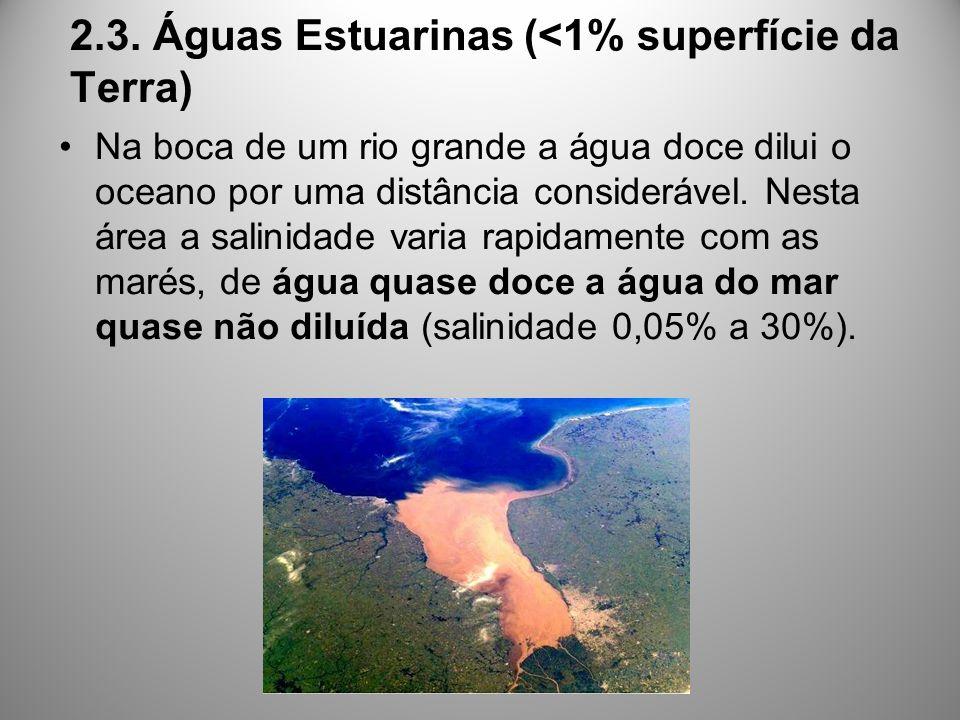 2.3. Águas Estuarinas (<1% superfície da Terra) Na boca de um rio grande a água doce dilui o oceano por uma distância considerável. Nesta área a salin