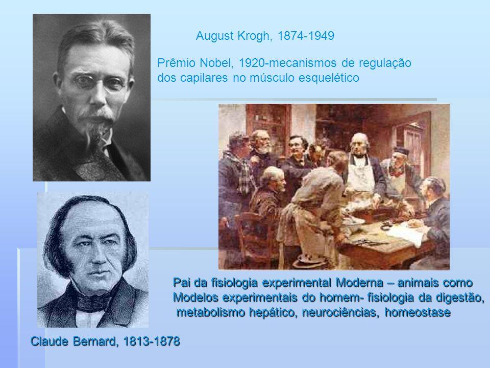 August Krogh, 1874-1949 Prêmio Nobel, 1920-mecanismos de regulação dos capilares no músculo esquelético Claude Bernard, 1813-1878 Pai da fisiologia ex