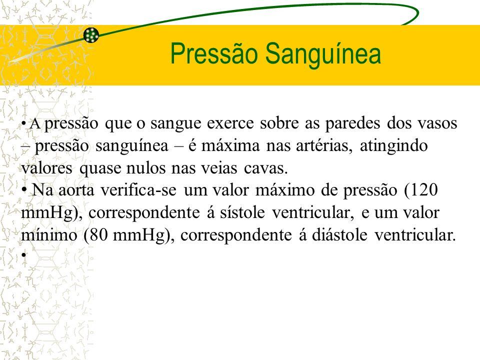 Pressão Sanguínea A pressão que o sangue exerce sobre as paredes dos vasos – pressão sanguínea – é máxima nas artérias, atingindo valores quase nulos
