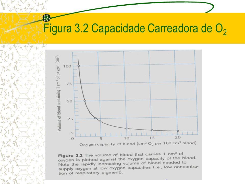 Figura 3.2 Capacidade Carreadora de O 2