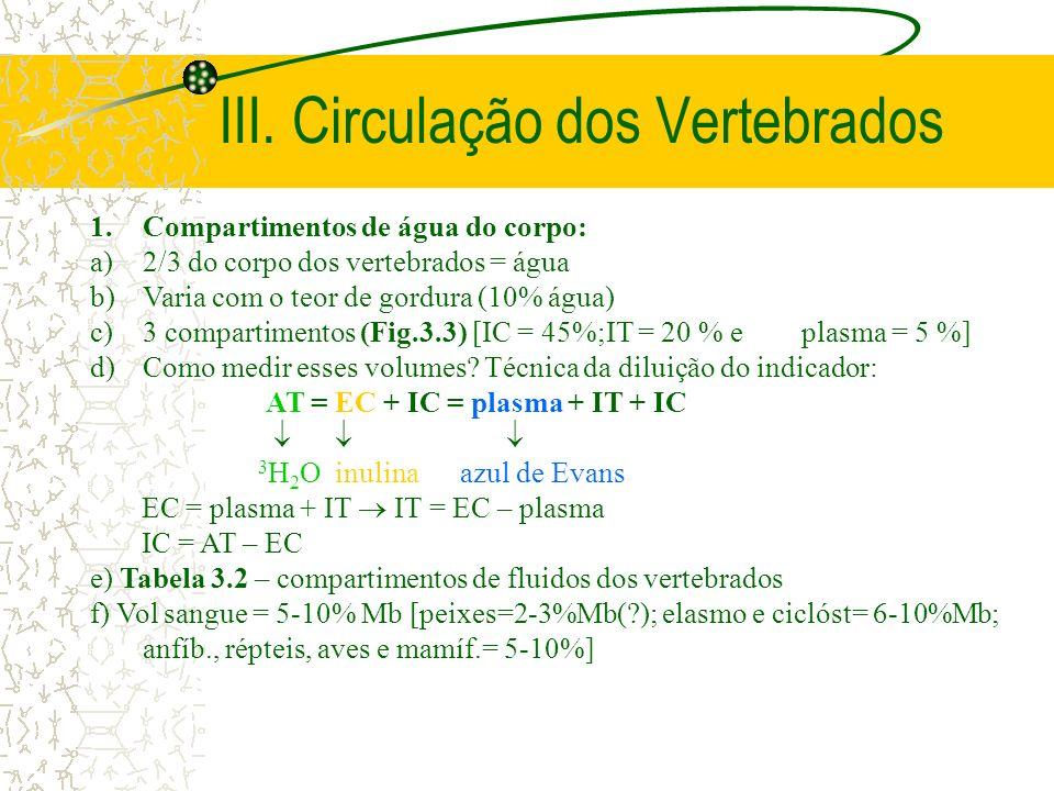 III. Circulação dos Vertebrados 1.Compartimentos de água do corpo: a)2/3 do corpo dos vertebrados = água b)Varia com o teor de gordura (10% água) c)3