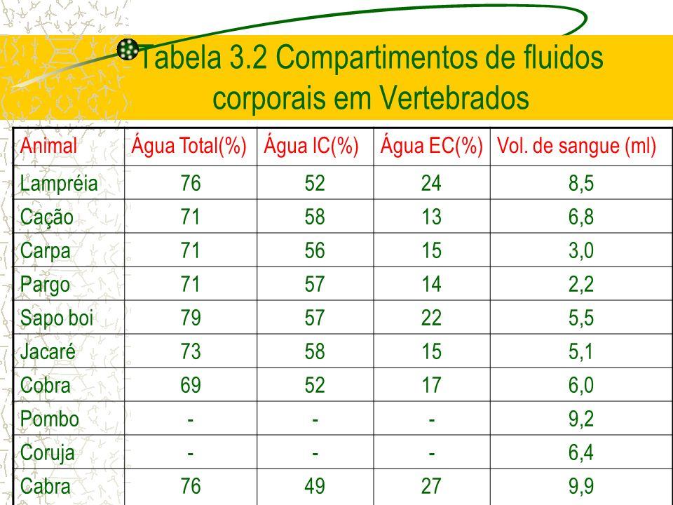 Tabela 3.2 Compartimentos de fluidos corporais em Vertebrados AnimalÁgua Total(%)Água IC(%)Água EC(%)Vol. de sangue (ml) Lampréia7652248,5 Cação715813