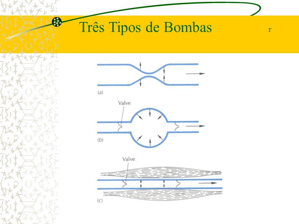Três Tipos de Bombas r