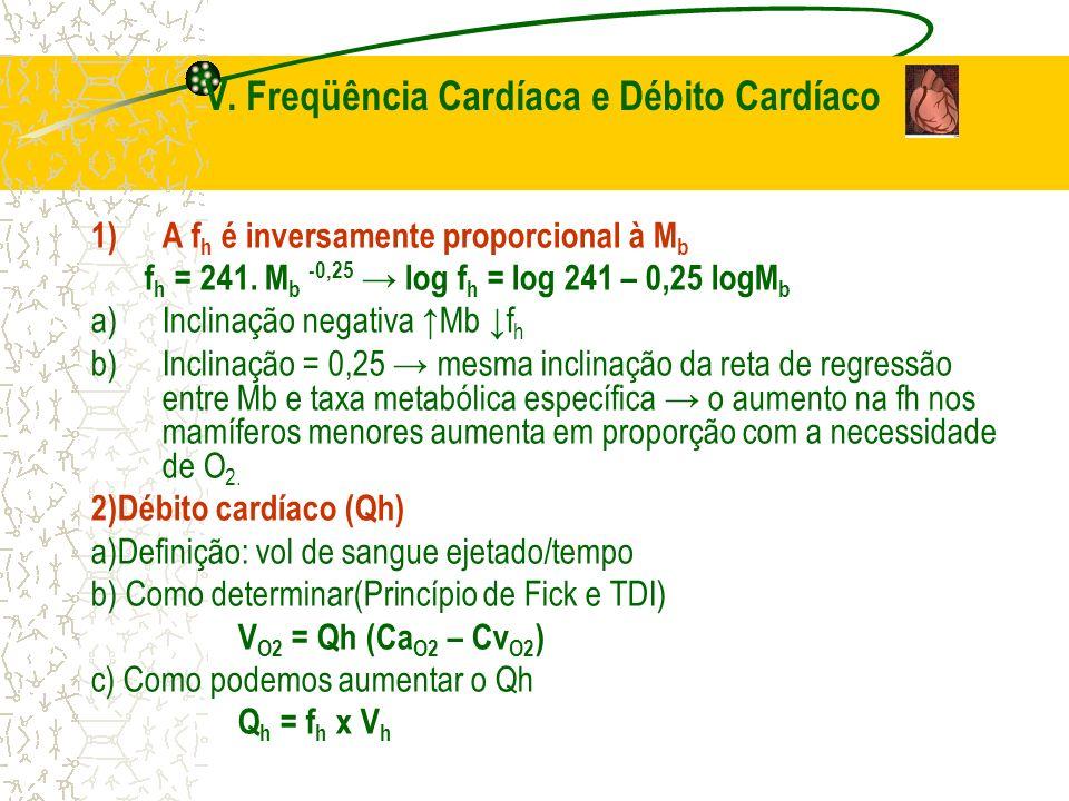 V. Freqüência Cardíaca e Débito Cardíaco 1)A f h é inversamente proporcional à M b f h = 241. M b -0,25 log f h = log 241 – 0,25 logM b a)Inclinação n