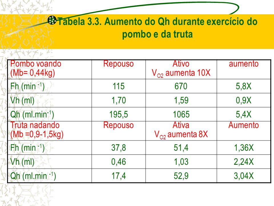 Tabela 3.3. Aumento do Qh durante exercício do pombo e da truta Pombo voando (Mb= 0,44kg) Repouso Ativo V O2 aumenta 10X aumento Fh (min -1 )1156705,8