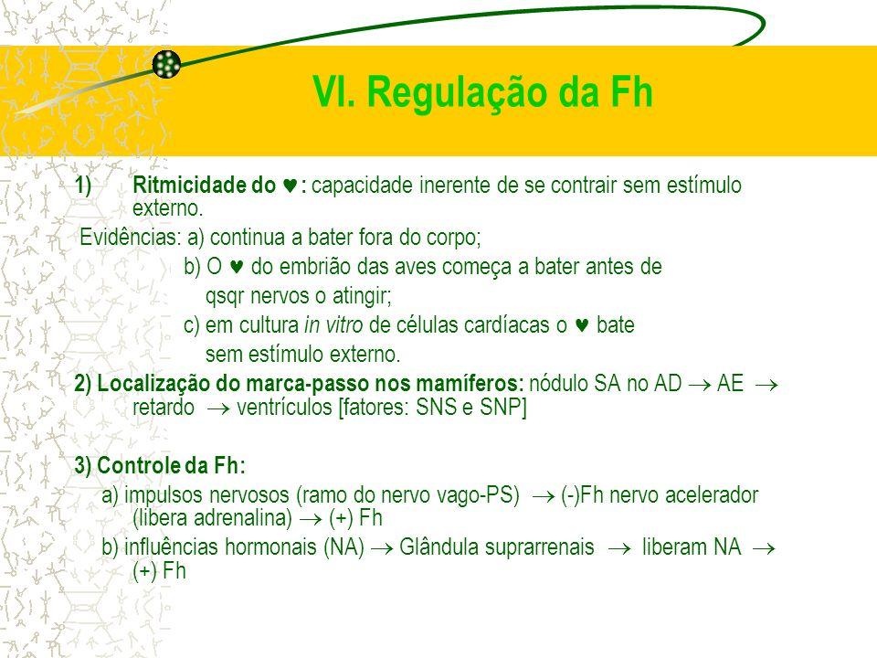 VI. Regulação da Fh 1)Ritmicidade do : capacidade inerente de se contrair sem estímulo externo. Evidências: a) continua a bater fora do corpo; b) O do