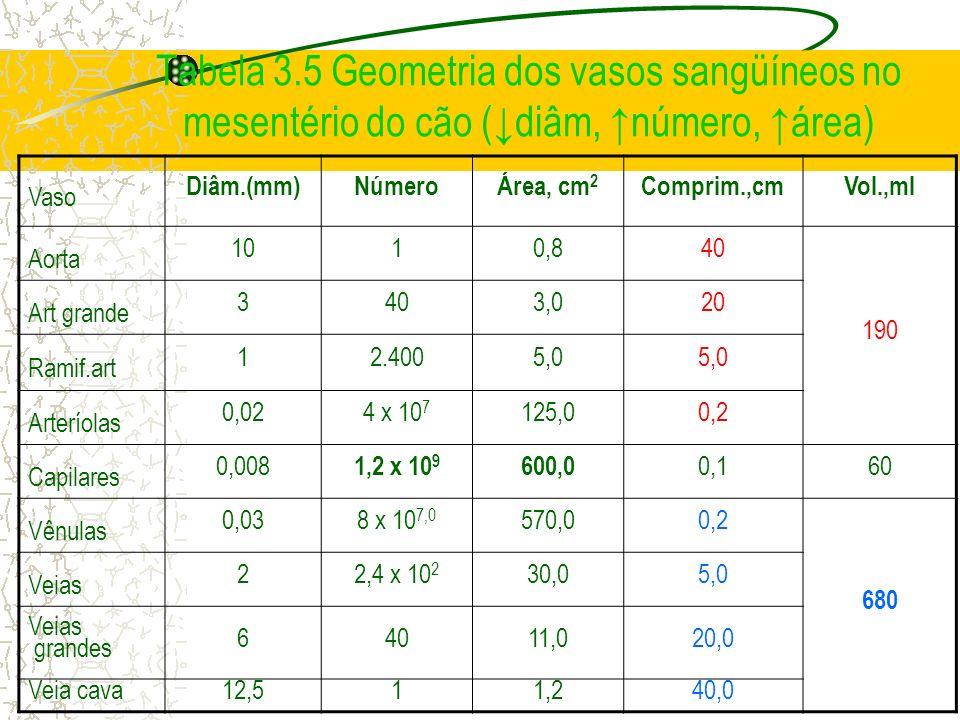 Tabela 3.5 Geometria dos vasos sangüíneos no mesentério do cão (diâm, número, área) Vaso Diâm.(mm) Número Área, cm 2 Comprim.,cmVol.,ml Aorta 1010,840
