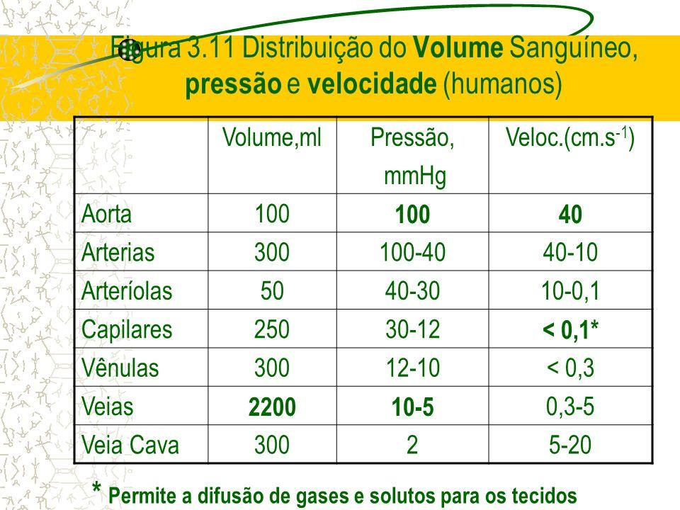 Figura 3.11 Distribuição do Volume Sanguíneo, pressão e velocidade (humanos) Volume,mlPressão, mmHg Veloc.(cm.s -1 ) Aorta100 40 Arterias300100-4040-1