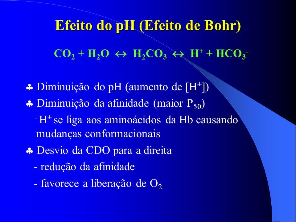 Efeito do pH (Efeito de Bohr) CO 2 + H 2 O H 2 CO 3 H + + HCO 3 - Diminuição do pH (aumento de [H + ]) Diminuição da afinidade (maior P 50 ) - H + se