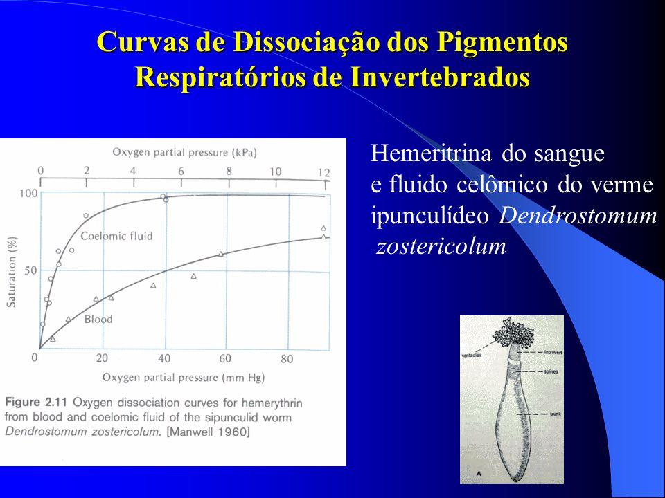 Curvas de Dissociação dos Pigmentos Respiratórios de Invertebrados Hemeritrina do sangue e fluido celômico do verme ipunculídeo Dendrostomum zosterico