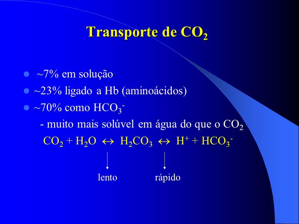 Transporte de CO 2 ~7% em solução ~23% ligado a Hb (aminoácidos) ~70% como HCO 3 - - muito mais solúvel em água do que o CO 2 CO 2 + H 2 O H 2 CO 3 H