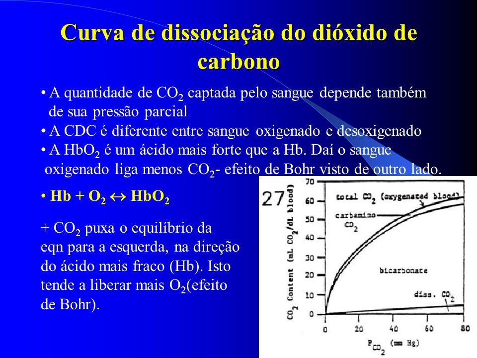 Curva de dissociação do dióxido de carbono A quantidade de CO 2 captada pelo sangue depende também de sua pressão parcial A CDC é diferente entre sang