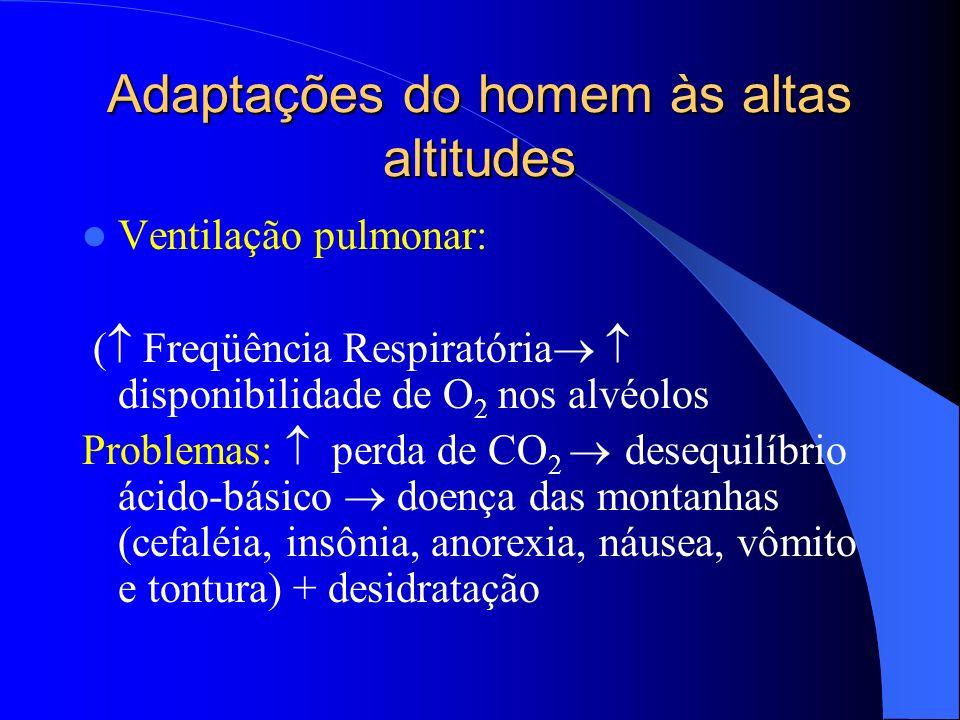Adaptações do homem às altas altitudes Ventilação pulmonar: ( Freqüência Respiratória disponibilidade de O 2 nos alvéolos Problemas: perda de CO 2 des