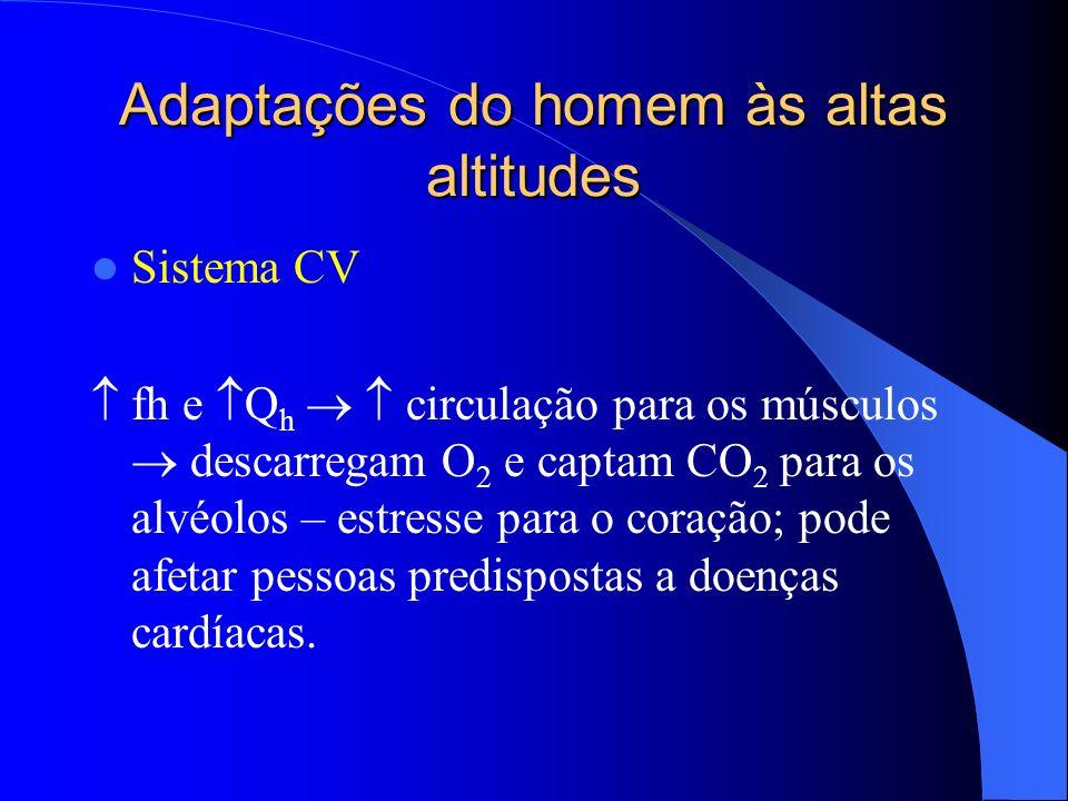 Adaptações do homem às altas altitudes Sistema CV fh e Q h circulação para os músculos descarregam O 2 e captam CO 2 para os alvéolos – estresse para