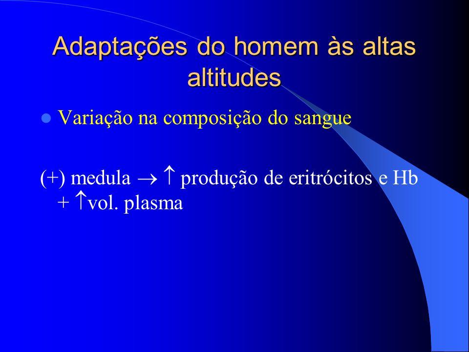 Adaptações do homem às altas altitudes Variação na composição do sangue (+) medula produção de eritrócitos e Hb + vol. plasma