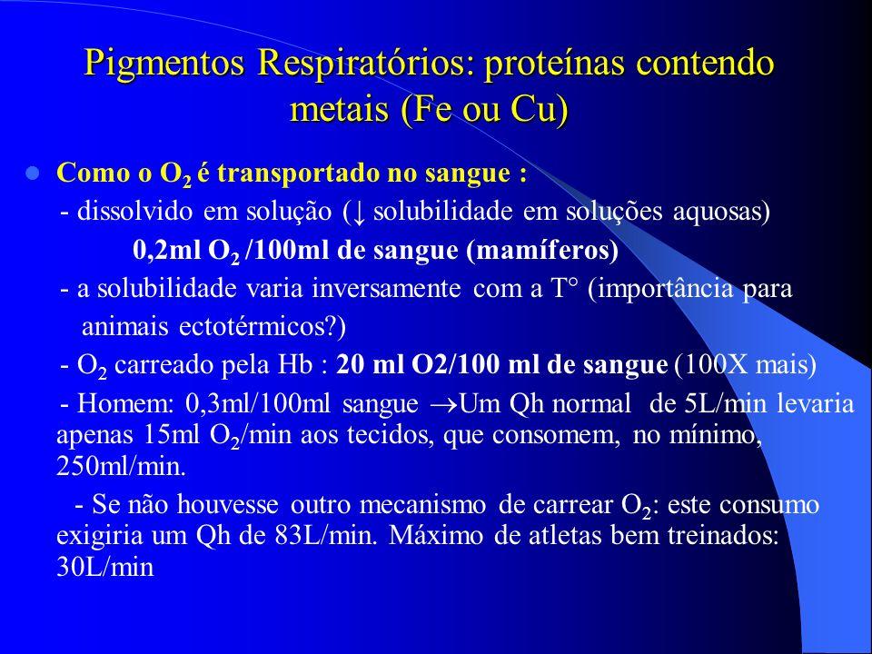 Pigmentos Respiratórios: proteínas contendo metais (Fe ou Cu) Como o O 2 é transportado no sangue : - dissolvido em solução ( solubilidade em soluções