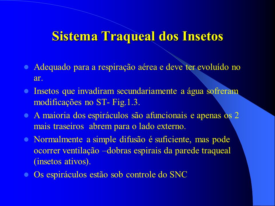 Sistema Traqueal dos Insetos Adequado para a respiração aérea e deve ter evoluído no ar. Insetos que invadiram secundariamente a água sofreram modific