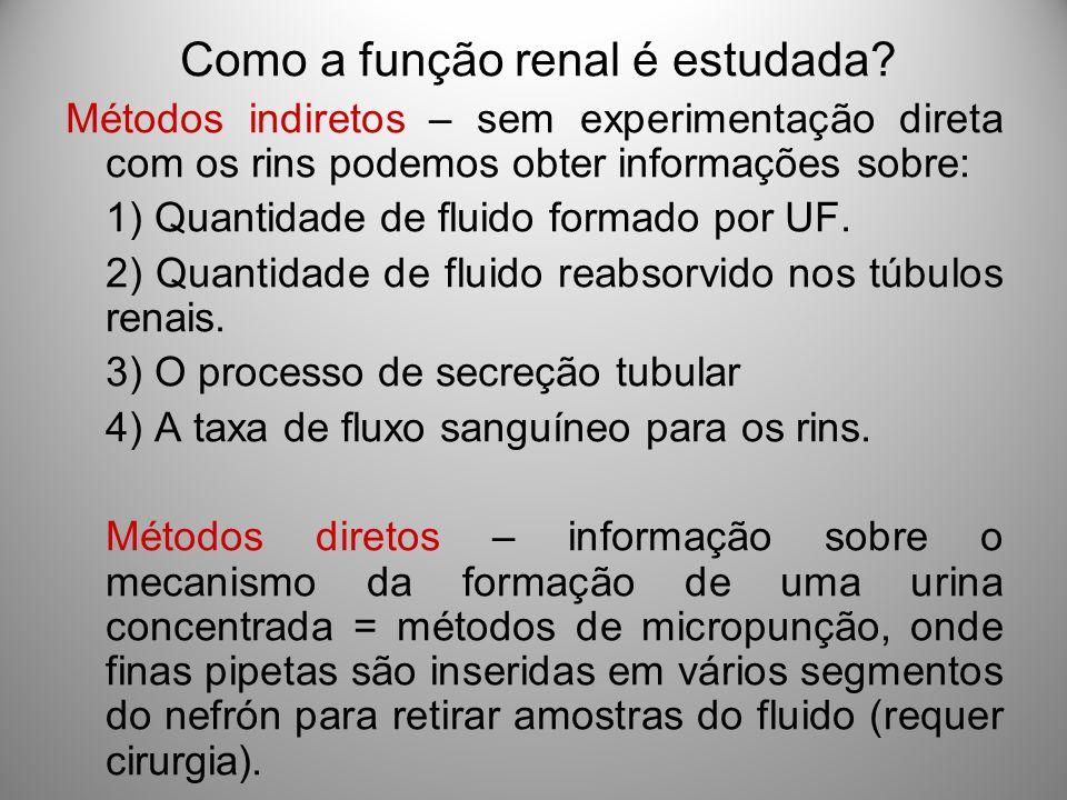 Como a função renal é estudada? Métodos indiretos – sem experimentação direta com os rins podemos obter informações sobre: 1) Quantidade de fluido for