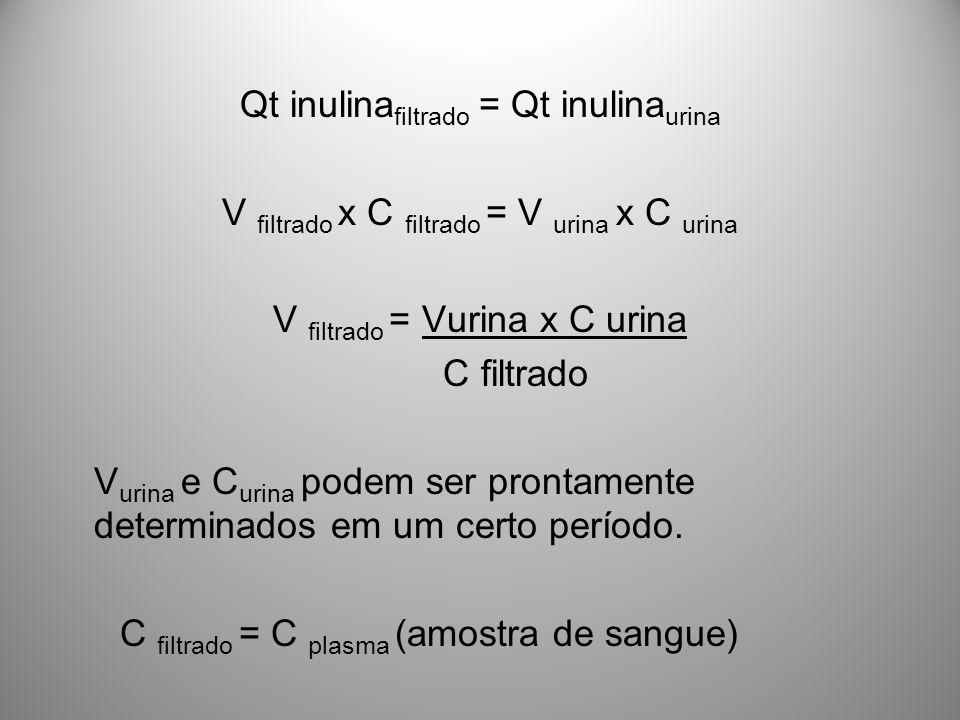 Qt inulina filtrado = Qt inulina urina V filtrado x C filtrado = V urina x C urina V filtrado = Vurina x C urina C filtrado V urina e C urina podem se