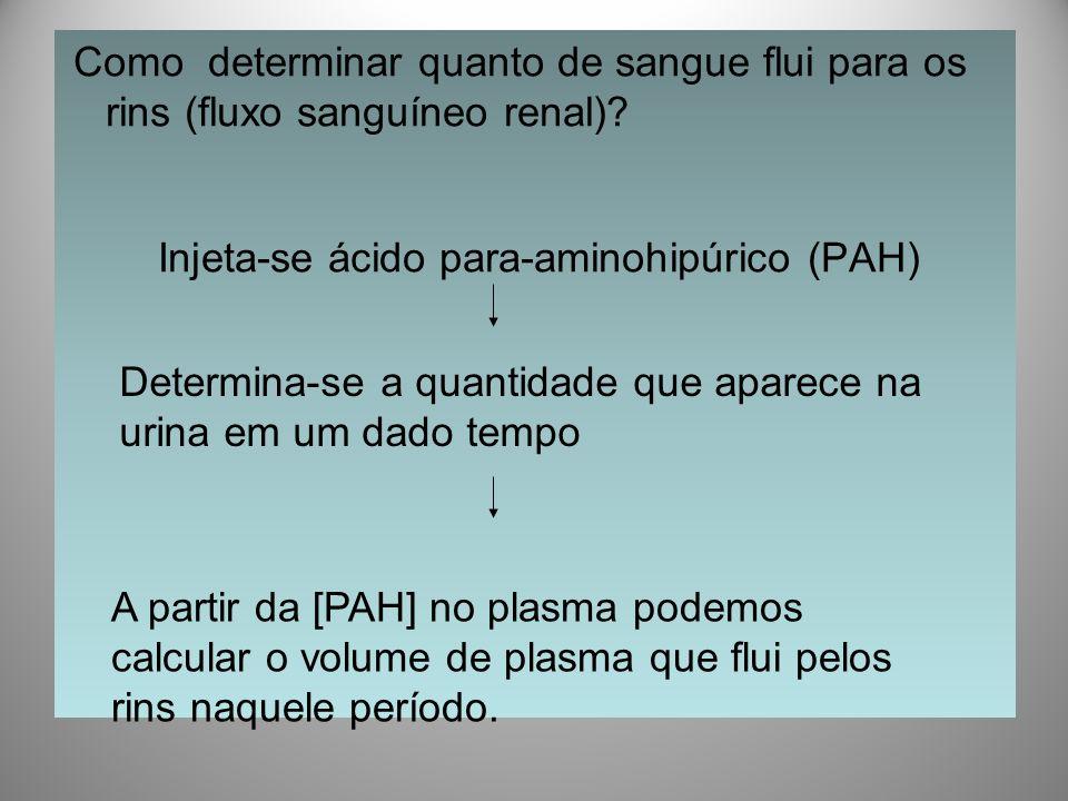 Como determinar quanto de sangue flui para os rins (fluxo sanguíneo renal)? Injeta-se ácido para-aminohipúrico (PAH) Determina-se a quantidade que apa