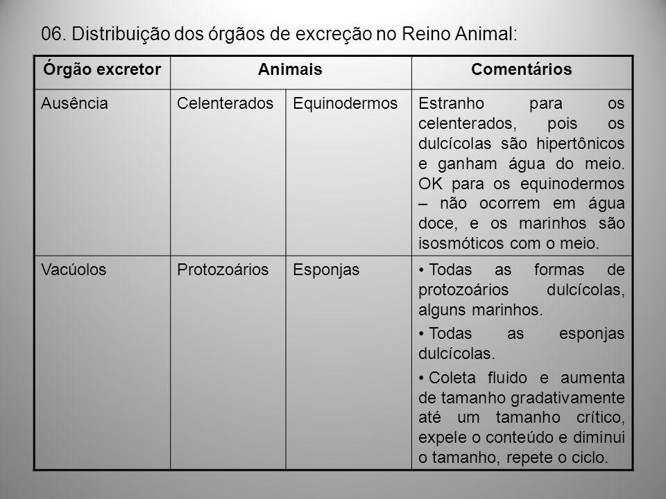 06. Distribuição dos órgãos de excreção no Reino Animal: Órgão excretorAnimaisComentários AusênciaCelenteradosEquinodermosEstranho para os celenterado