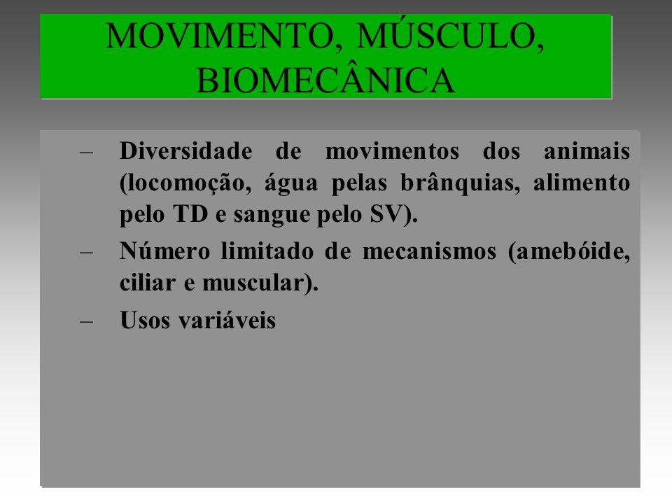 MOVIMENTO, MÚSCULO, BIOMECÂNICA –Diversidade de movimentos dos animais (locomoção, água pelas brânquias, alimento pelo TD e sangue pelo SV).