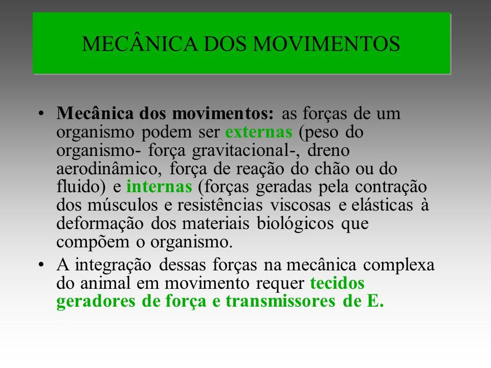 Mecânica dos movimentos: as forças de um organismo podem ser externas (peso do organismo- força gravitacional-, dreno aerodinâmico, força de reação do chão ou do fluido) e internas (forças geradas pela contração dos músculos e resistências viscosas e elásticas à deformação dos materiais biológicos que compõem o organismo.