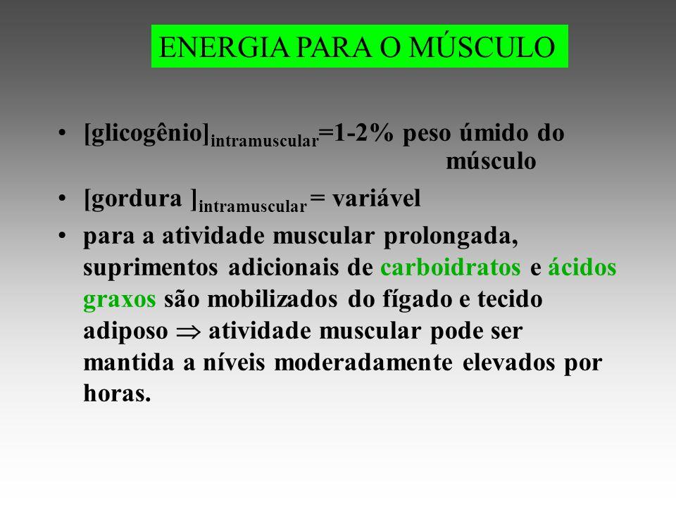 [glicogênio] intramuscular =1-2% peso úmido do músculo [gordura ] intramuscular = variável para a atividade muscular prolongada, suprimentos adicionais de carboidratos e ácidos graxos são mobilizados do fígado e tecido adiposo atividade muscular pode ser mantida a níveis moderadamente elevados por horas.