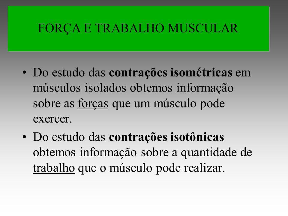 Do estudo das contrações isométricas em músculos isolados obtemos informação sobre as forças que um músculo pode exercer.