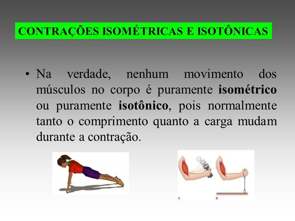 Na verdade, nenhum movimento dos músculos no corpo é puramente isométrico ou puramente isotônico, pois normalmente tanto o comprimento quanto a carga mudam durante a contração.