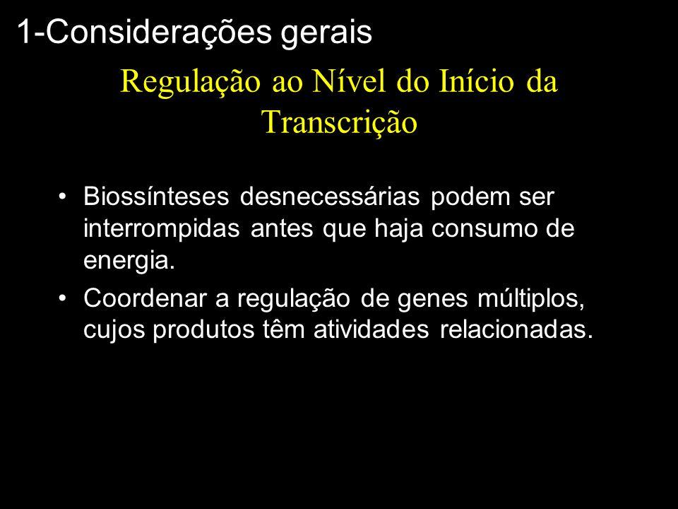 Regulação ao Nível do Início da Transcrição Biossínteses desnecessárias podem ser interrompidas antes que haja consumo de energia. Coordenar a regulaç