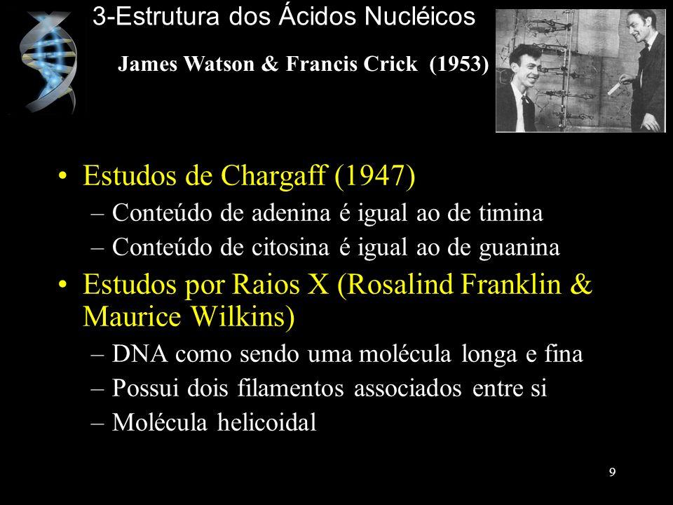 Estudos de Chargaff (1947) –Conteúdo de adenina é igual ao de timina –Conteúdo de citosina é igual ao de guanina Estudos por Raios X (Rosalind Frankli