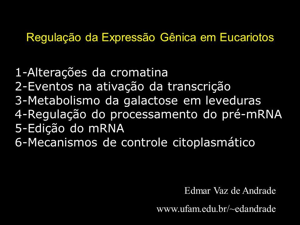 Regulação da Expressão Gênica em Eucariotos Edmar Vaz de Andrade www.ufam.edu.br/~edandrade 1-Alterações da cromatina 2-Eventos na ativação da transcr