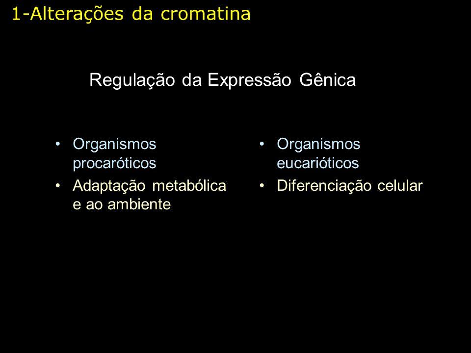 Regulação da Expressão Gênica Organismos procaróticos Adaptação metabólica e ao ambiente Organismos eucarióticos Diferenciação celular 1-Alterações da