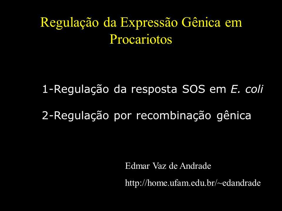 Regulação da Expressão Gênica em Procariotos Edmar Vaz de Andrade http://home.ufam.edu.br/~edandrade 1-Regulação da resposta SOS em E. coli 2-Regulaçã