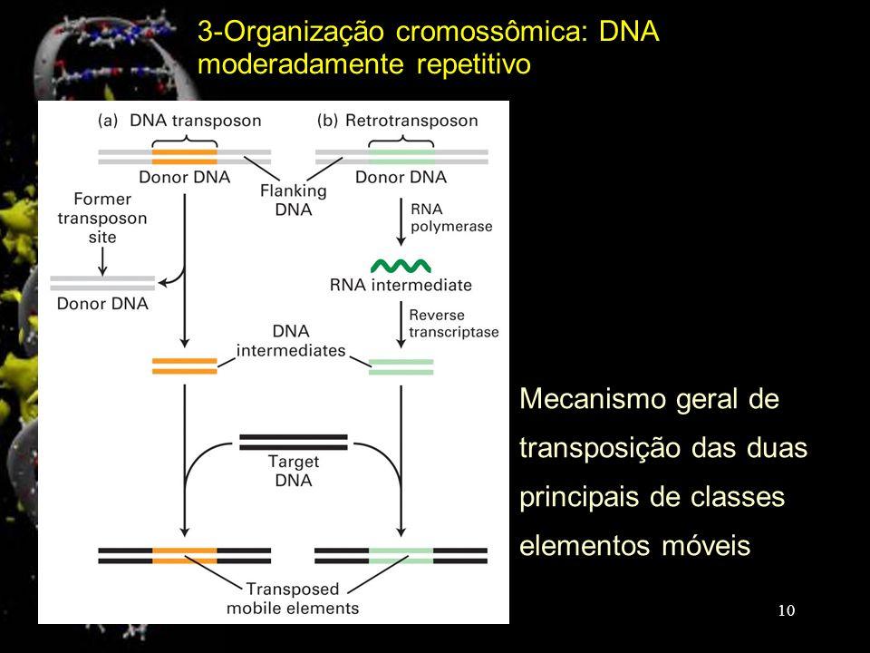 Mecanismo geral de transposição das duas principais de classes elementos móveis 3-Organização cromossômica: DNA moderadamente repetitivo 10