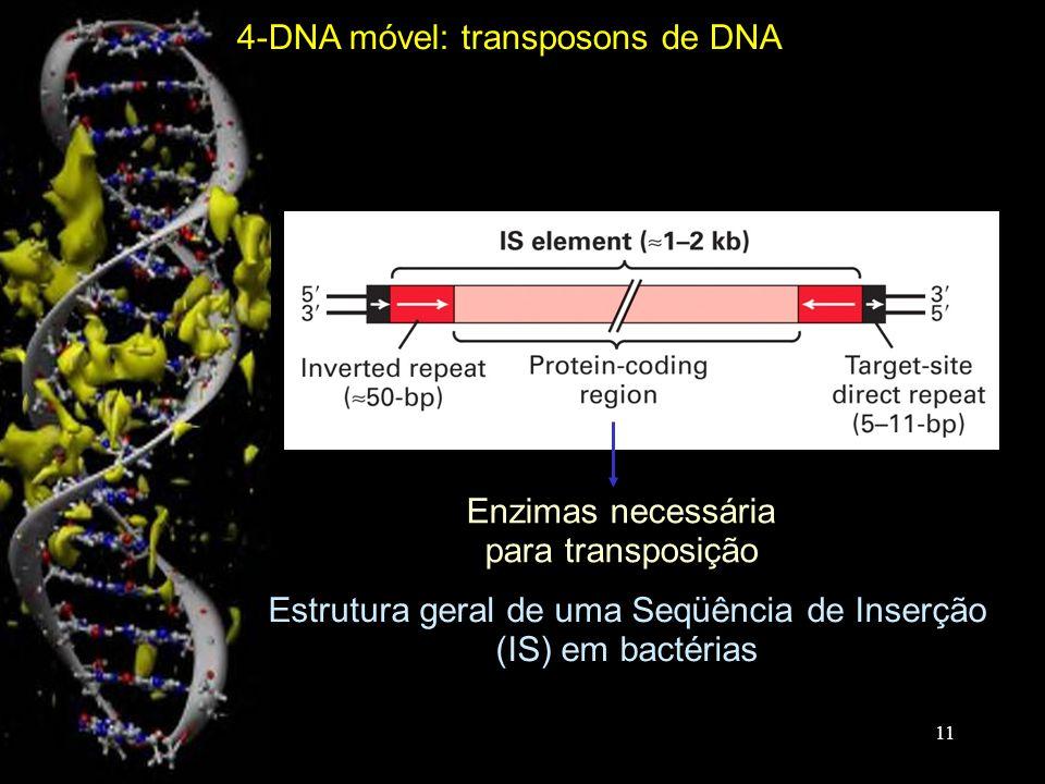 Estrutura geral de uma Seqüência de Inserção (IS) em bactérias Enzimas necessária para transposição 4-DNA móvel: transposons de DNA 11