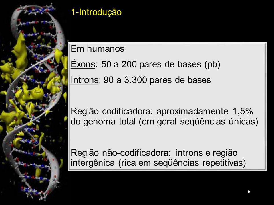 Em humanos Éxons: 50 a 200 pares de bases (pb) Introns: 90 a 3.300 pares de bases Região codificadora: aproximadamente 1,5% do genoma total (em geral seqüências únicas) Região não-codificadora: íntrons e região intergênica (rica em seqüências repetitivas) Em humanos Éxons: 50 a 200 pares de bases (pb) Introns: 90 a 3.300 pares de bases Região codificadora: aproximadamente 1,5% do genoma total (em geral seqüências únicas) Região não-codificadora: íntrons e região intergênica (rica em seqüências repetitivas) 1-Introdução 6
