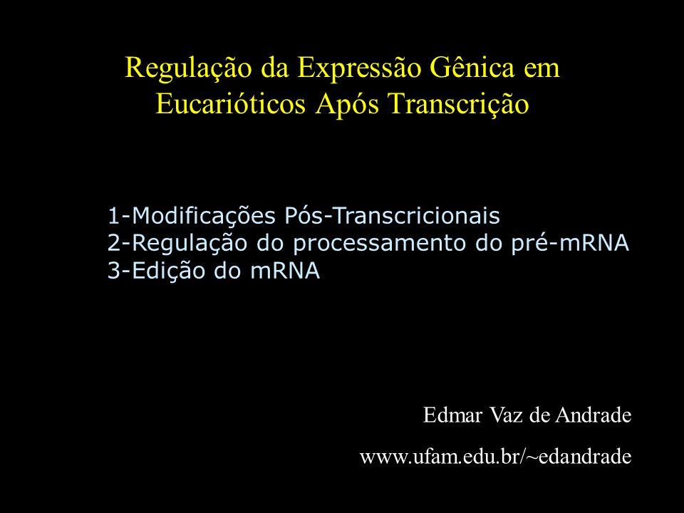 Regulação da Expressão Gênica em Eucarióticos Após Transcrição Edmar Vaz de Andrade www.ufam.edu.br/~edandrade 1-Modificações Pós-Transcricionais 2-Re