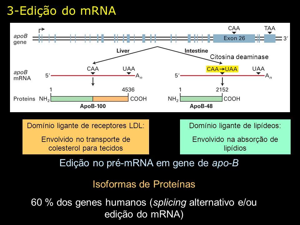 3-Edição do mRNA Edição no pré-mRNA em gene de apo-B Citosina deaminase Domínio ligante de lipídeos: Envolvido na absorção de lipídios Domínio ligante