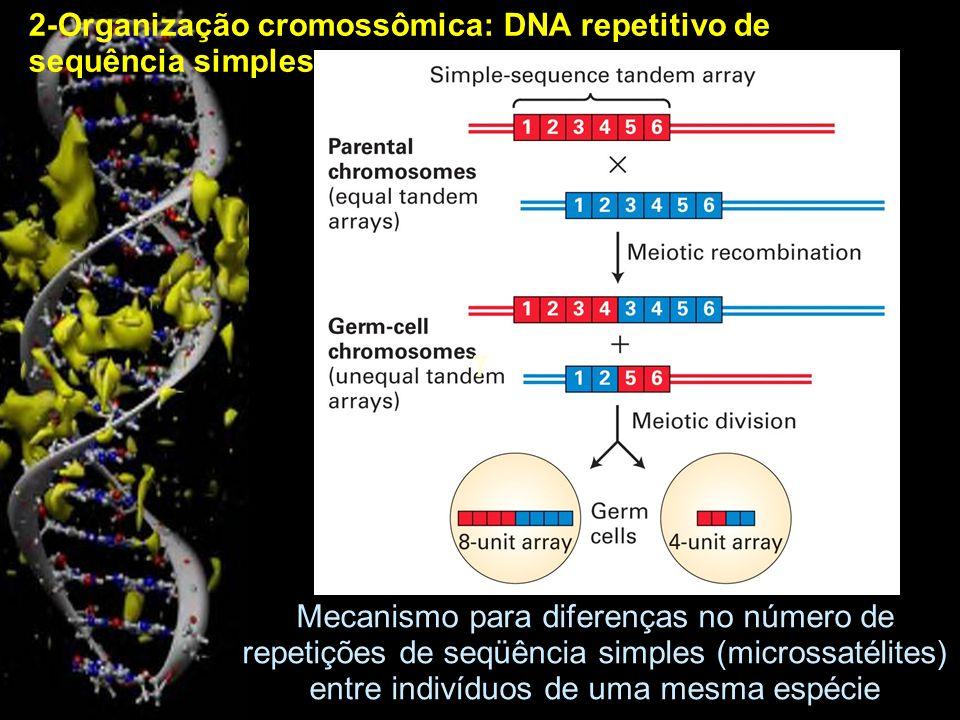 Expansões de microssatélites causam, pelo menos, 14 tipos diferentes de doenças neuromusculares, dependendo do gene no qual ocorrem.